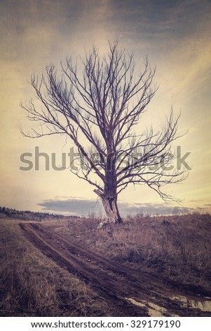 Gloomy autumn landscape in vintage processing - stock photo