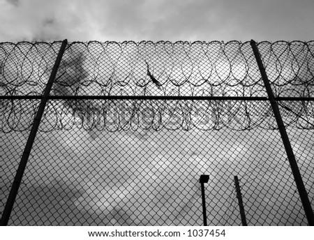barbed wire fence prison. Gloomy Razor-wire Fence At A Prison. Monochrome. Barbed Wire Prison E