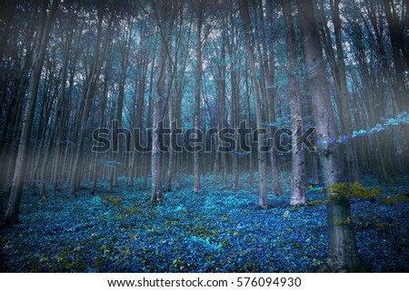 Gloomy surreal woods with lights and blue vegetation, magic fairytale scene forest