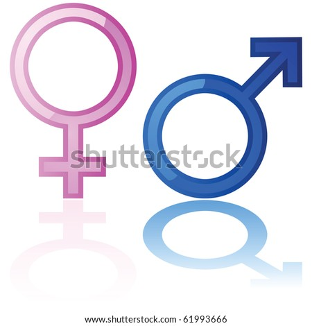Glossy illustration of a male and a female symbol reflected over a white background