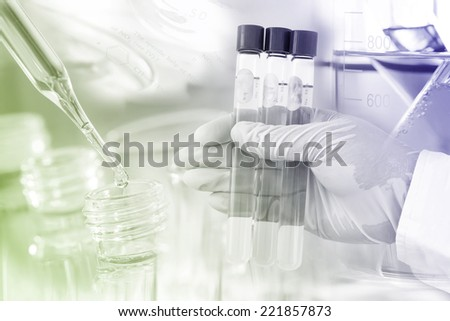 Gloved hand hold the test tubes in laboratory room.