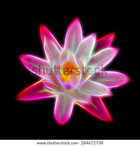 Glow image of Pink waterlily flower. (Lotus) - stock photo