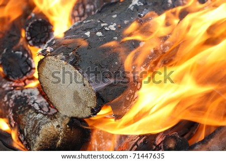 Glowing campfire - stock photo