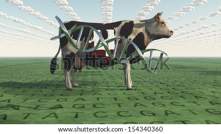 GMO Business Cow - stock photo