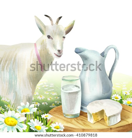 Goat and dairy products