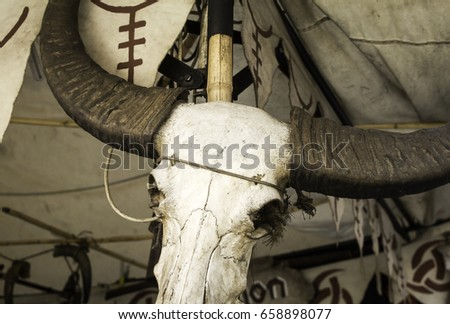 Goat skull in tent of campaign India, animals and symbols