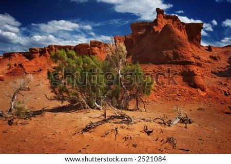 Gobi Desert rock with tree - stock photo