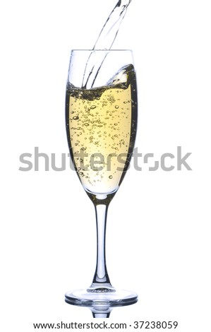 goblet with vine on a white background