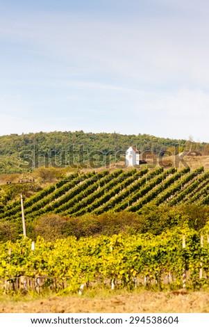 God's torture near Hnanice with autumnal vineyard, Southern Moravia, Czech Republic - stock photo
