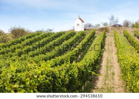 God's torture near Hnanice with vineyard, Southern Moravia, Czech Republic - stock photo
