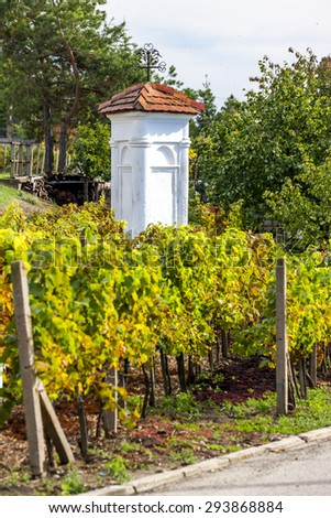 God's torture with autumnal vineyard, Pritluky, Czech Republic - stock photo