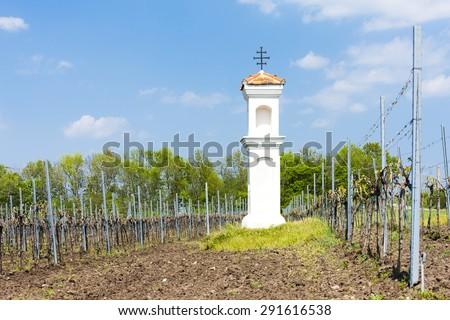 God's torture with vineyard near Palava, Czech Republic - stock photo
