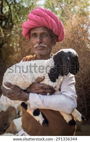GODWAR REGION, INDIA - 13 FEBRUARY 2015: Elderly Rabari tribesman holds lamb in outdoor stable. Rabari or Rewari are an Indian community in the state of Gujarat. - stock photo