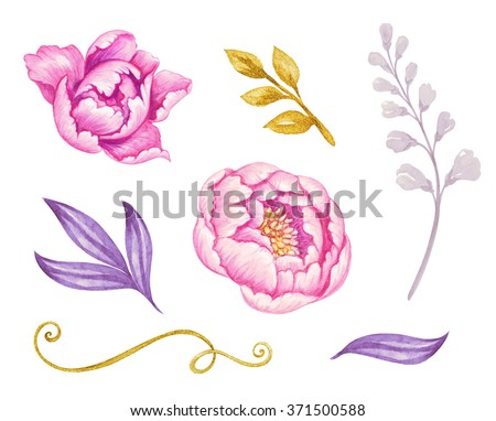 gold and violet leaves and pink peony flowers watercolor illustration, floral design elements isolated on white background - stock photo