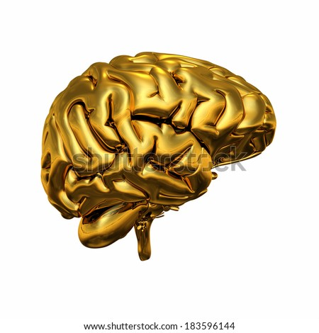 Gold brain isolated 7 - stock photo