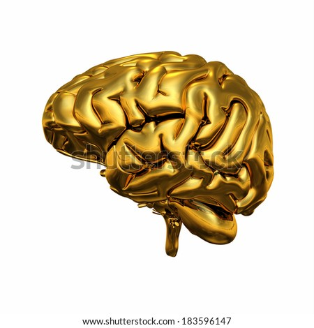 Gold brain isolated 2