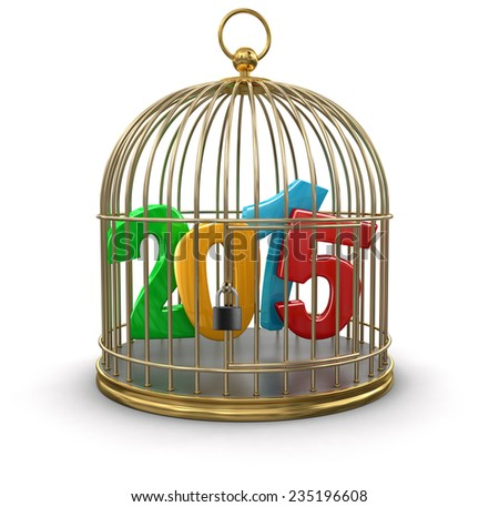 Gold Cage with 2015 (clipping path included) - stock photo