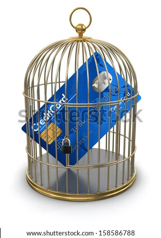 Gold Cage with Credit Card (clipping path included) - stock photo