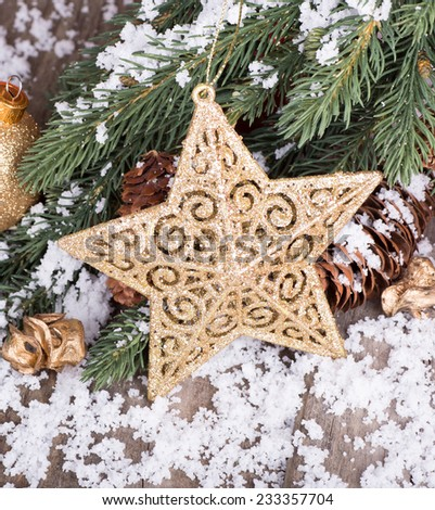 Gold Christmas star on a snowy evergreen tree branch - stock photo