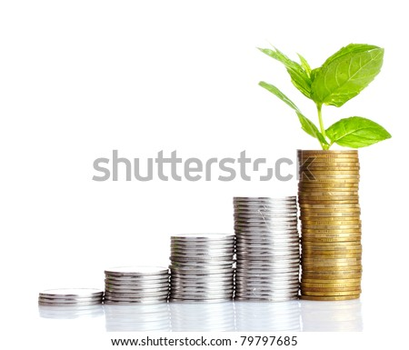 gold coins and plant isolated on white - stock photo