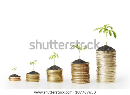 gold coins and plant them isolated on white