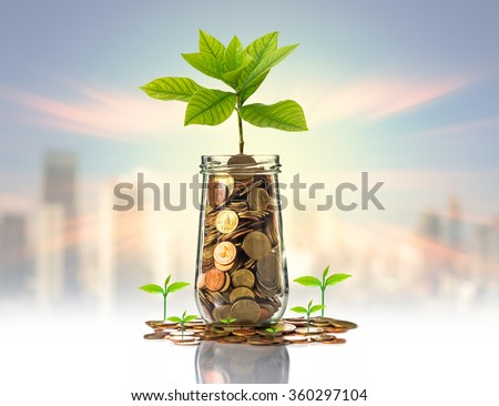 Gold coins and seed in clear bottle on photo blurred cityscape background,Business investment growth concept - stock photo