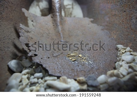Gold dig - stock photo