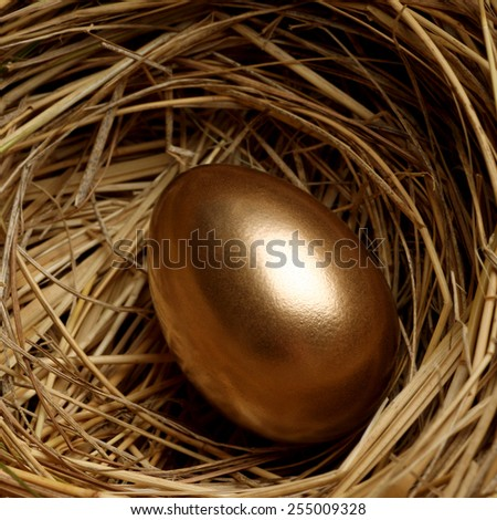 Gold egg - stock photo