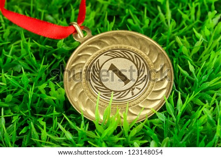 Gold medal on grass background - stock photo
