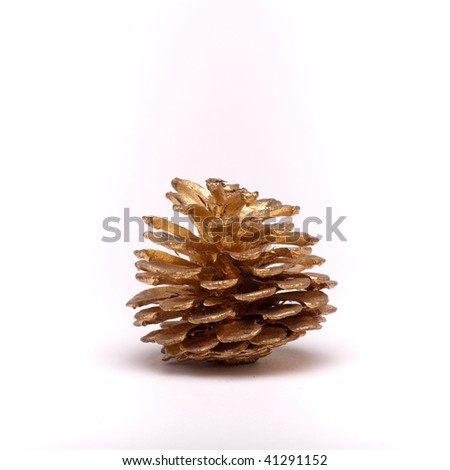 Gold painted Christmas decoration of a Fir / Pine tree cone isolated against white background.