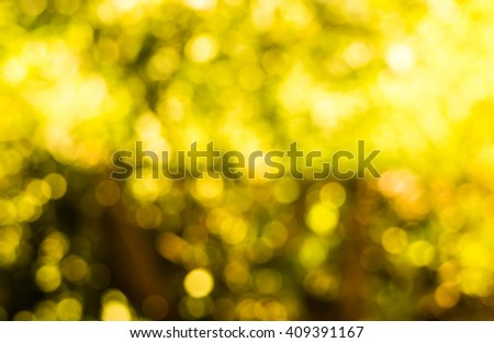 Gold spring or summer background. Elegant abstract background with bokeh