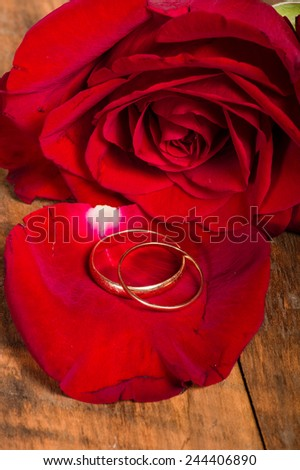 Gold wedding rings on red rose petals - stock photo