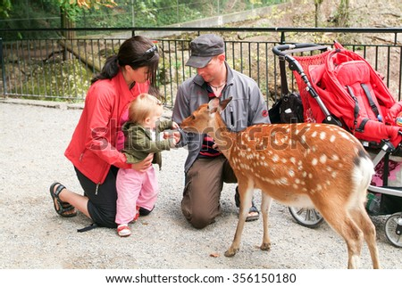 Goldau, Switzerland - 29 august 2008: people who feed and pat the fawns at the zoo of Goldau in Switzerland
