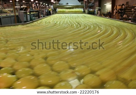 Golden Apples in water with blurred motion - stock photo