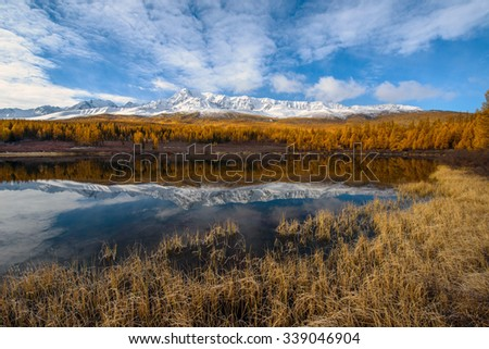 Golden autumn in Altai