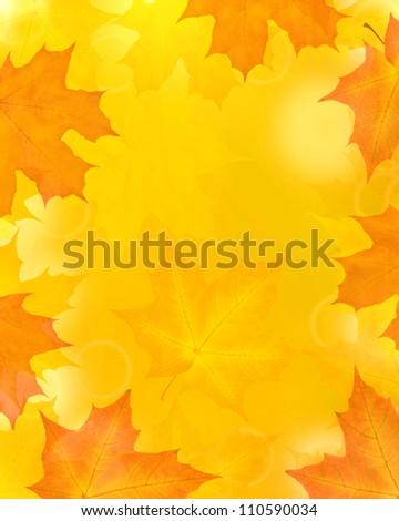 golden autumn maple leaves background - stock photo
