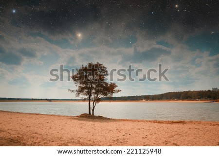 golden autumn on the lake. everything was yellow in the. Elements of this image furnished by NASA - stock photo