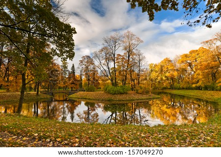 Golden autumn trees next to  beautiful pond and maple leaves on the grass