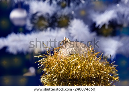 golden ball decoration front, Christmas tree at background blue cast  - stock photo