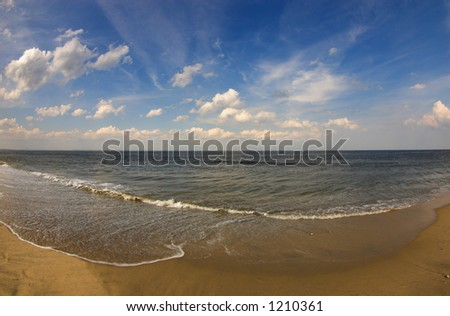 Golden beach - stock photo