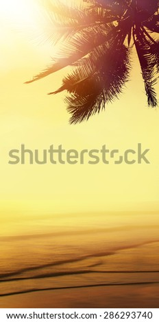Golden beach tropical banner background. Coconut palm tree, sunlight and sunset over the sea. Vertical view. - stock photo
