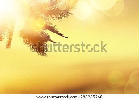 Golden beach tropical banner background. Coconut palm tree, sunlight and sunset over the sea. Bokeh effect.  - stock photo