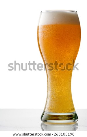Golden Beer in a Crystal Beer Glass on White with Reflection - stock photo