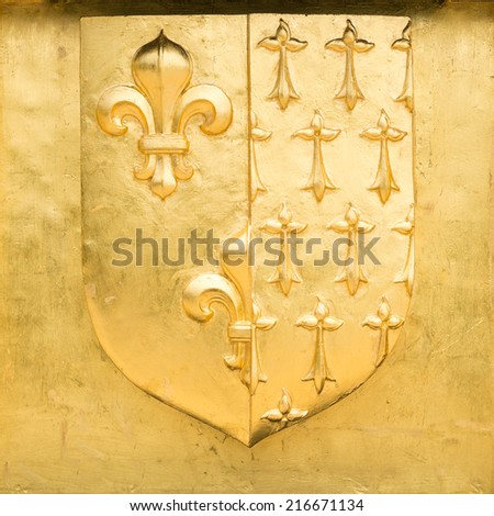 Golden Blazon of Lille, coat of arms, with flowers of lily and ermine spots, France - stock photo