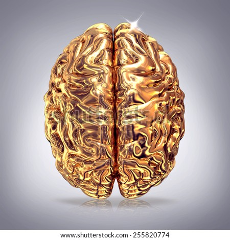 Golden brains on gray background. High resolution. 3D render.  Concept.  - stock photo