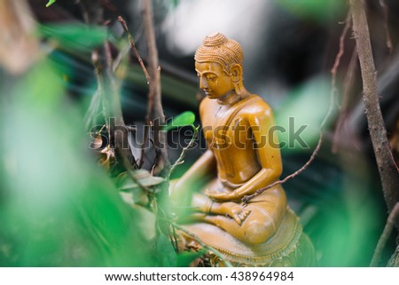 Golden Buddha in the Forest. - stock photo