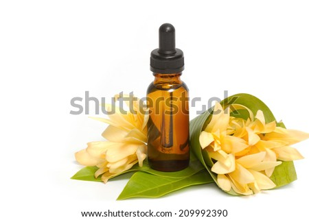 Golden champaka absolute with champaka flower for spa aroma therapy - stock photo