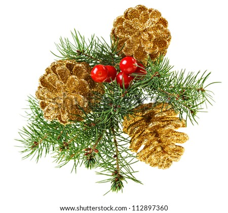 Golden Christmas cones with fir branch and red berries, isolated on white