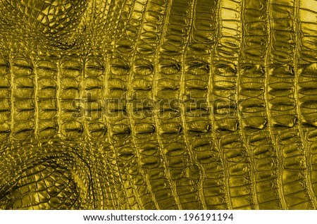 """Golden Crocodile bone skin texture background. This image of Freshwater Crocodile """"Crocodylus siamensis"""".This skin is very classic and beauty. - stock photo"""