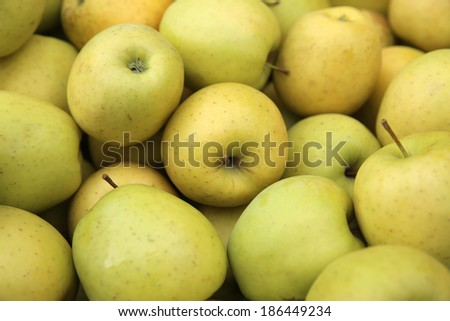Golden Delicious Apples at Farmers Market in Trentino. Italy - stock photo